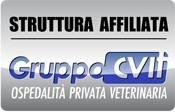 Gruppocvit